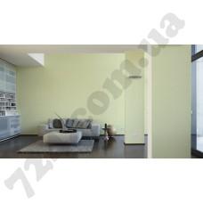 Интерьер White & Colours Артикул 213211 интерьер 5