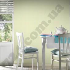 Интерьер White & Colours Артикул 213211 интерьер 6