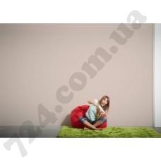 Интерьер Die glatte Wand Артикул 309150 интерьер 7