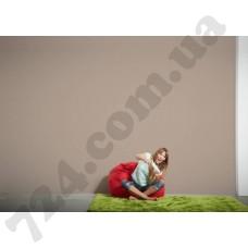 Интерьер Die glatte Wand Артикул 309167 интерьер 8