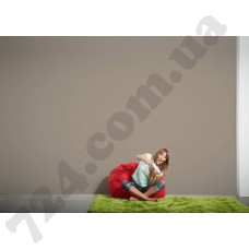 Интерьер Die glatte Wand Артикул 309525 интерьер 6