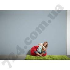 Интерьер Die glatte Wand Артикул 309518 интерьер 6