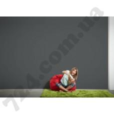 Интерьер Die glatte Wand Артикул 309549 интерьер 8