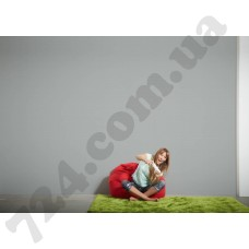 Интерьер Die glatte Wand Артикул 309136 интерьер 7