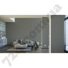 Интерьер Die glatte Wand Артикул 309143 интерьер 6