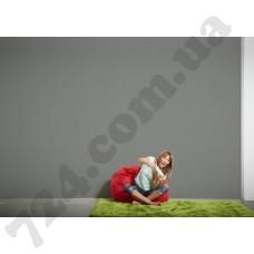 Интерьер Die glatte Wand Артикул 309143 интерьер 7