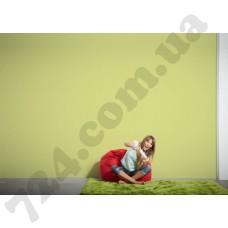 Интерьер Die glatte Wand Артикул 309556 интерьер 6
