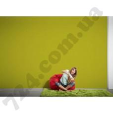 Интерьер Die glatte Wand Артикул 309174 интерьер 7