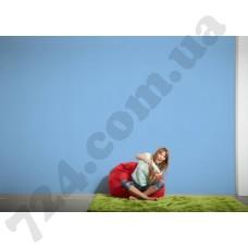Интерьер Die glatte Wand Артикул 309624 интерьер 6