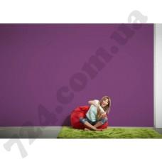 Интерьер Die glatte Wand Артикул 309570 интерьер 7