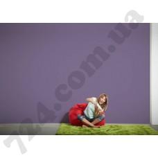 Интерьер Die glatte Wand Артикул 309181 интерьер 6