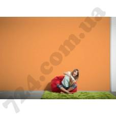 Интерьер Die glatte Wand Артикул 309587 интерьер 7