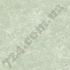 Артикул обоев: TB4301