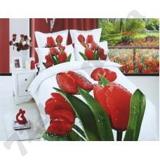 Комплект постельного белья LaScala AB-384 дв