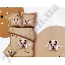 Комплект постельного белья LaScala ABC-304 дв