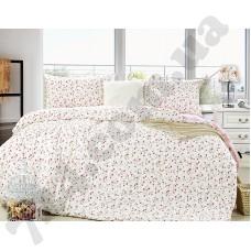 Комплект постельного белья LaScala JR-22 дв