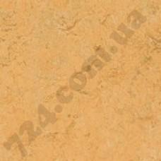 Артикул линолеума: 3847