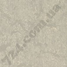 Артикул линолеума: 3136