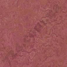 Артикул линолеума: 3230