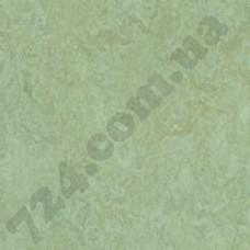 Артикул линолеума: 3882
