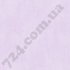 Артикул обоев: WU20604