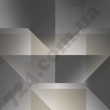Артикул обоев: SE20563