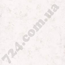 PAI100220102