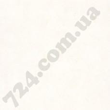 Артикул обоев: PAI100221256