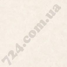 Артикул обоев: PAI100221343