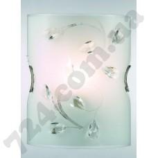 Настенно-потолочный светильник Blitz 2928-11