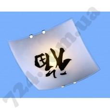 Настенно-потолочный светильник Blitz 2972-21