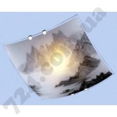 Настенно-потолочный светильник Blitz 2524-11