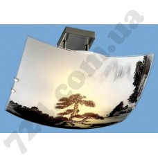 Артикул света: Потолочный светильник Blitz 2504-32