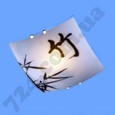 Настенно-потолочный светильник Blitz 2514-21