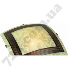 Настенно-потолочный светильник Blitz 29171-222