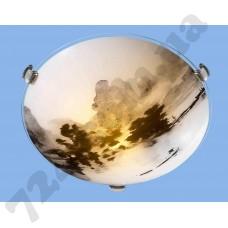 Настенно-потолочный светильник Blitz 2971-21