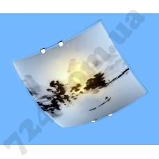 Настенно-потолочный светильник Blitz 2973-21