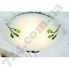 Настенно-потолочный светильник Blitz 6034-23