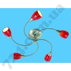 Артикул света: Потолочный светильник Blitz 54280-35