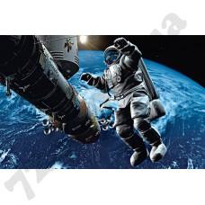 Артикул обоев: 00629 Космонавт