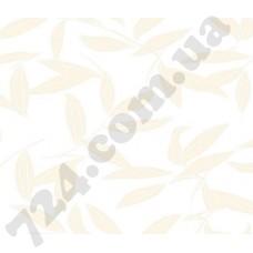 Артикул обоев: CD3001