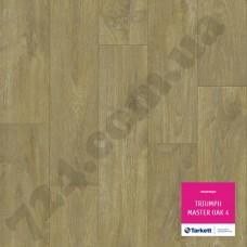 Артикул линолеума: Master oak 4
