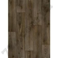 Артикул линолеума: Forest Oak 660E