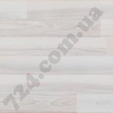 Polar Ash ORIG 04152
