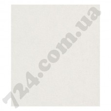 Обои Rasch Modern Surfaces 489804