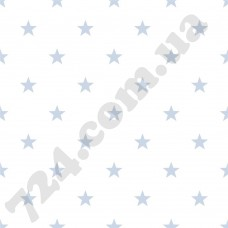 Артикул обоев: G23104