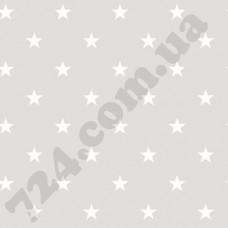 Артикул обоев: G23109