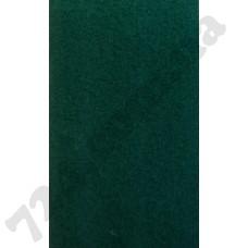 Артикул ковролина: ExpoSalsa 200