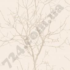Артикул обоев: NA3405